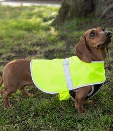 Dog vest (1)