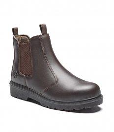 Footwear - Footwear (1)